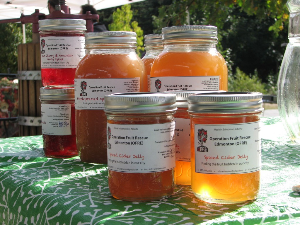 pilot project jams jellies cider