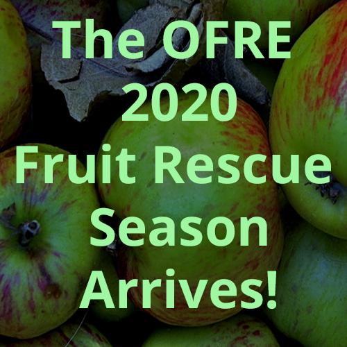 OFRE 2020 Fruit Rescue Season Arrives